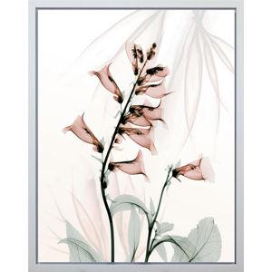 Monee UMĚLECKÝ TISK, květiny, 40/50 cm, - zelená, červená, bílá